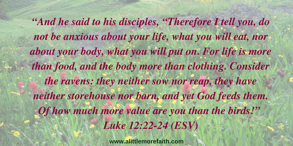 """And he said to his disciples, ""Therefore I tell you, do not be anxious about your life, what you will eat, nor about your body, what you will put on. For life is more than food, and"